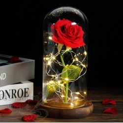 Magav roos klaasis